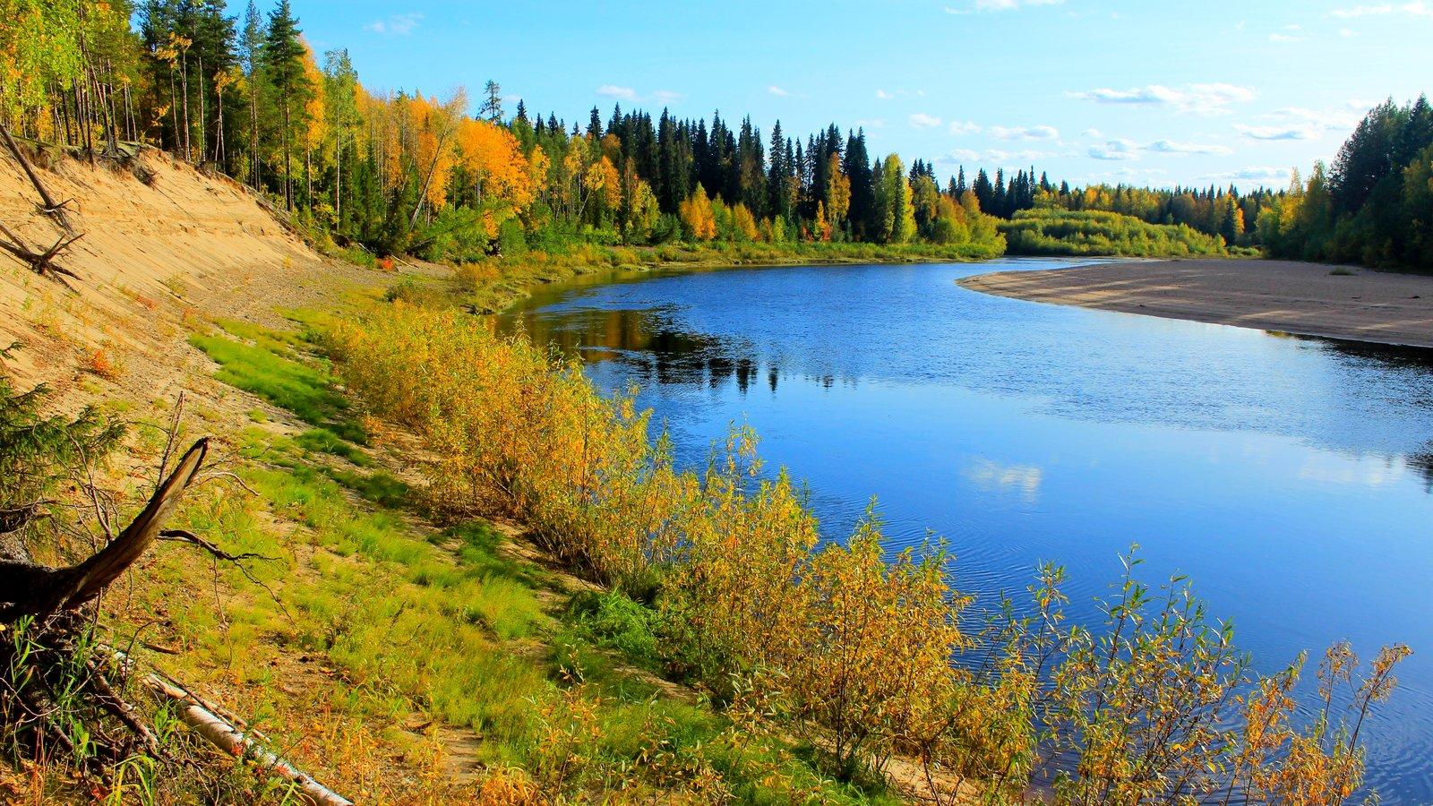 У реки. Осень.JPG