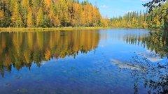 Лесное озеро. Осень.JPG